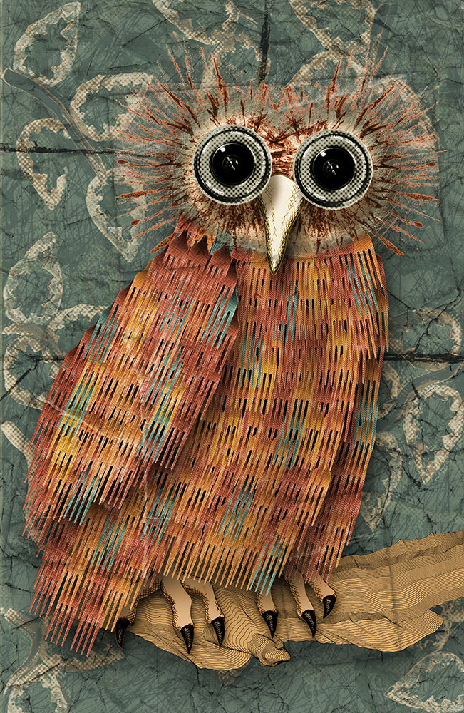 CCTV Owl - postcard from the island of Phestonia